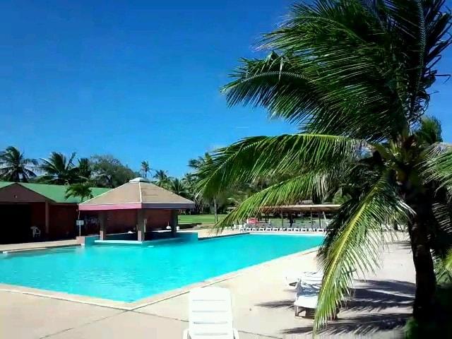 トンガンビーチリゾートのプール