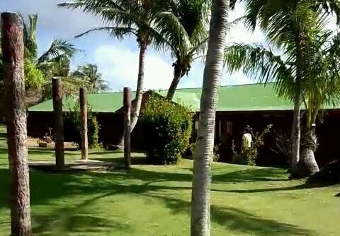 トンガンリゾートの整備されたヤシの木