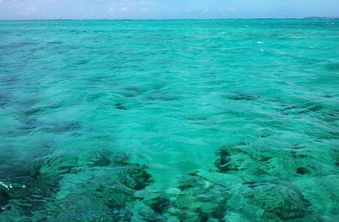 透き通ったココス島の海