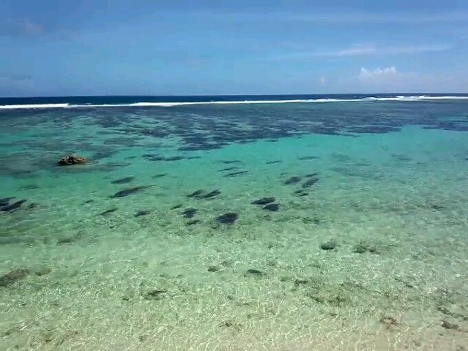 トンガンビーチリゾートの綺麗な海
