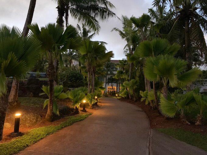 レオパレスリゾートの遊歩道のライトアップ